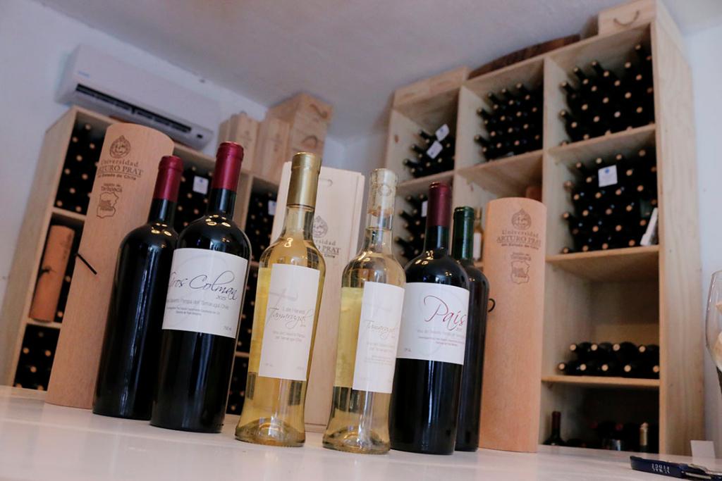 viticultores11